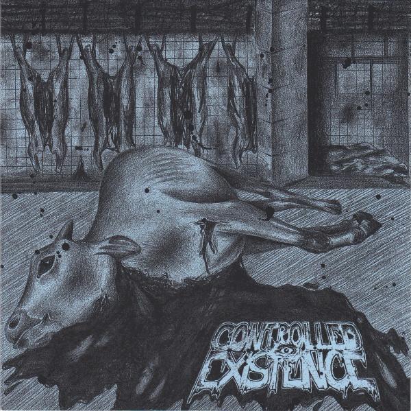 Controlled Existence / Alea Iacta Est- Split