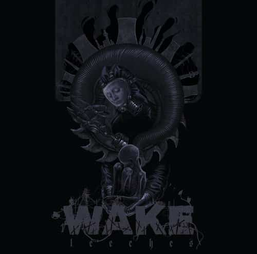 Wake - Leeches